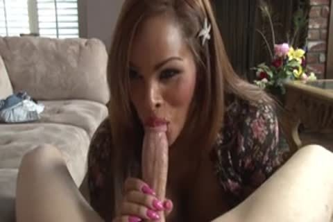 Divinely biggest rod Of transsexual