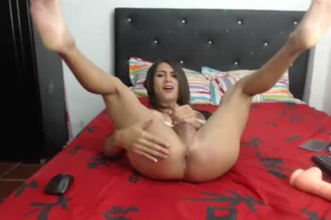 Solo Masturbation For breasty ladyboy