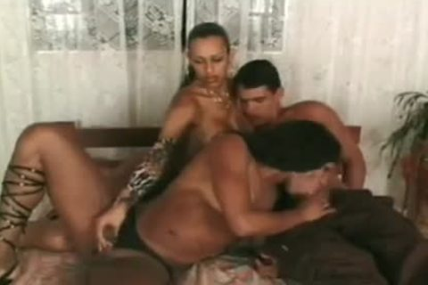 Transexual pound Party - Boss Film