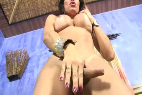 Kris Alves Is A Very yummy Transexual And Wants Sex today